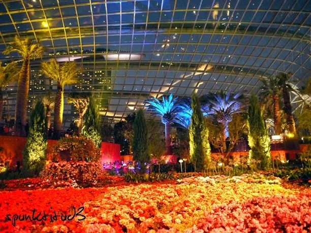 gardens by the bay flower dome - Garden By The Bay Event