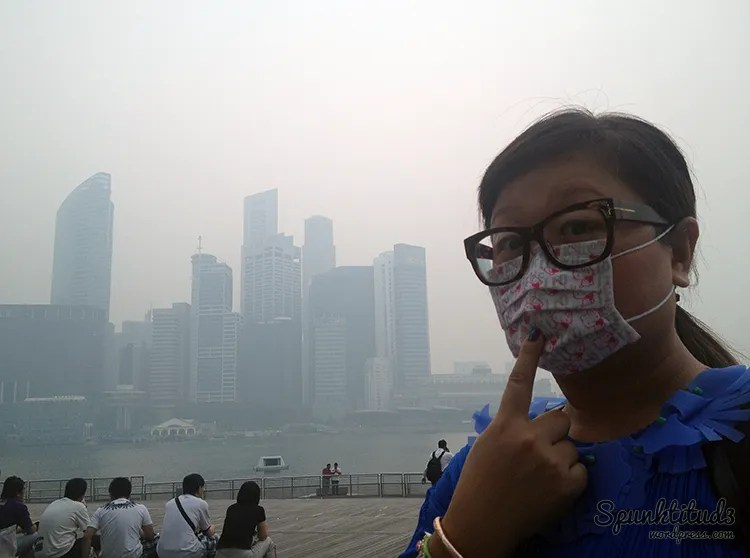 The Haze in Singapore