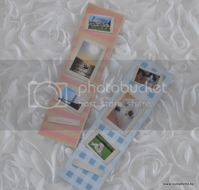 photo thumb_DSC_0010_1024_zpslrppxghf.jpg