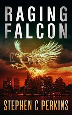 Raging Falcon cover