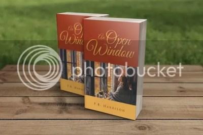 photo An Open Window - Book Blitz_zpsmjsetepu.jpg