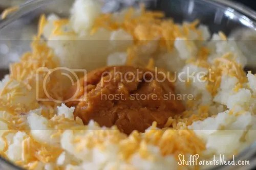 photo twicebakedpotatoeswithpumpkin6_zps86352b50.jpg