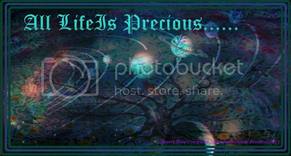 All Life Is  Precious photo AllLifeIsPrecious_zps717c96cc.jpg