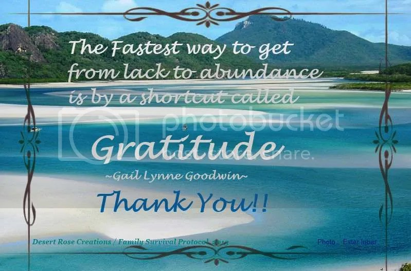 Gratitude photo GRATITUDEWhiteBeachwithblackeuropeanborderwikimediacommonsAuthorEsterInbar_zpsfbe2e5f8.jpg