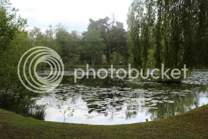 small lake at trilakes