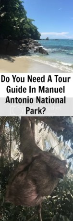 Do You need a tour guide in Manuel Antonio National Park?