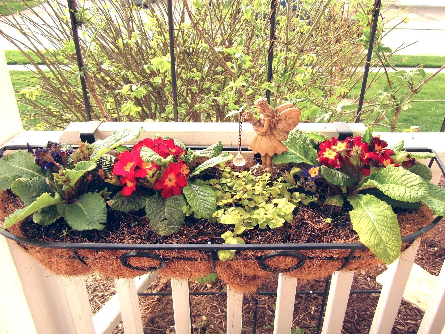 Flower Pots on a Budget / MyUrbanGardenOasis