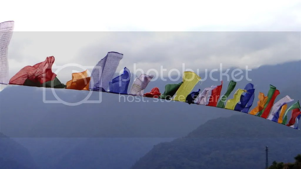 clrs line of flags  btn 231112