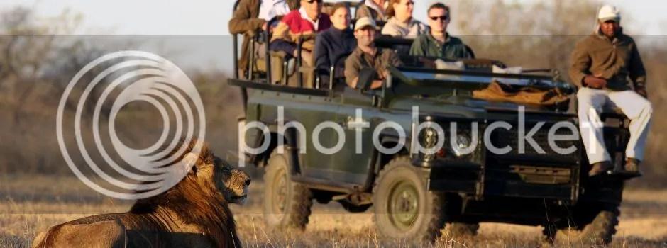 luxury safari kzn