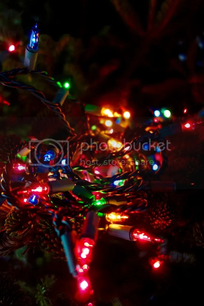 photo Christmas Tree_zpsbpnxluay.jpg