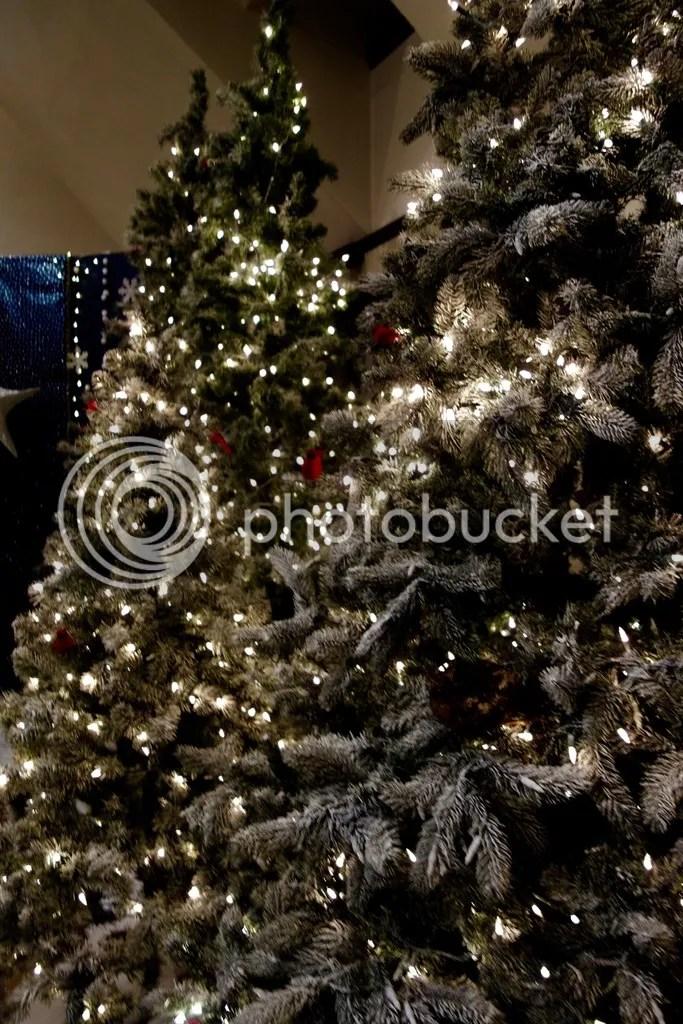 photo Ford House Christmas 21_zpsgazdxior.jpg