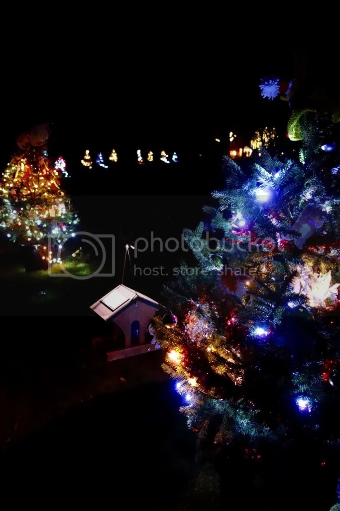 photo Ford House Christmas_zpscratqsfc.jpg