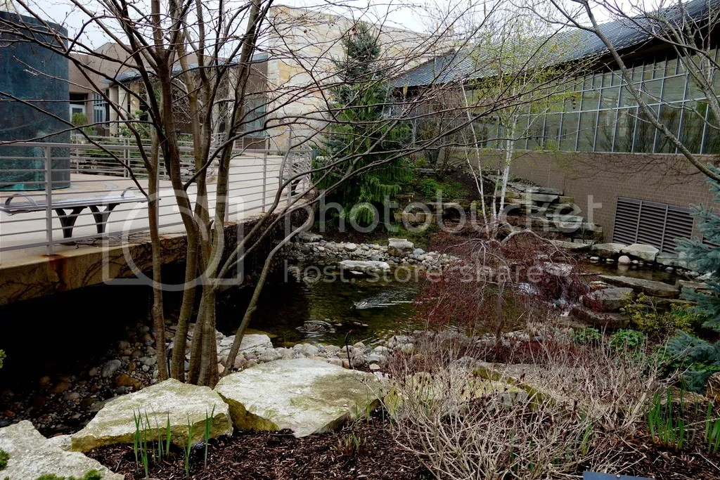 photo Meijer Gardens Pond_zpsgvwqtg36.jpg