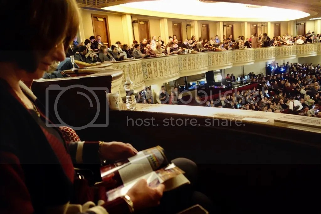 photo Detroit Opera House 6_zpshyo8gmrs.jpg