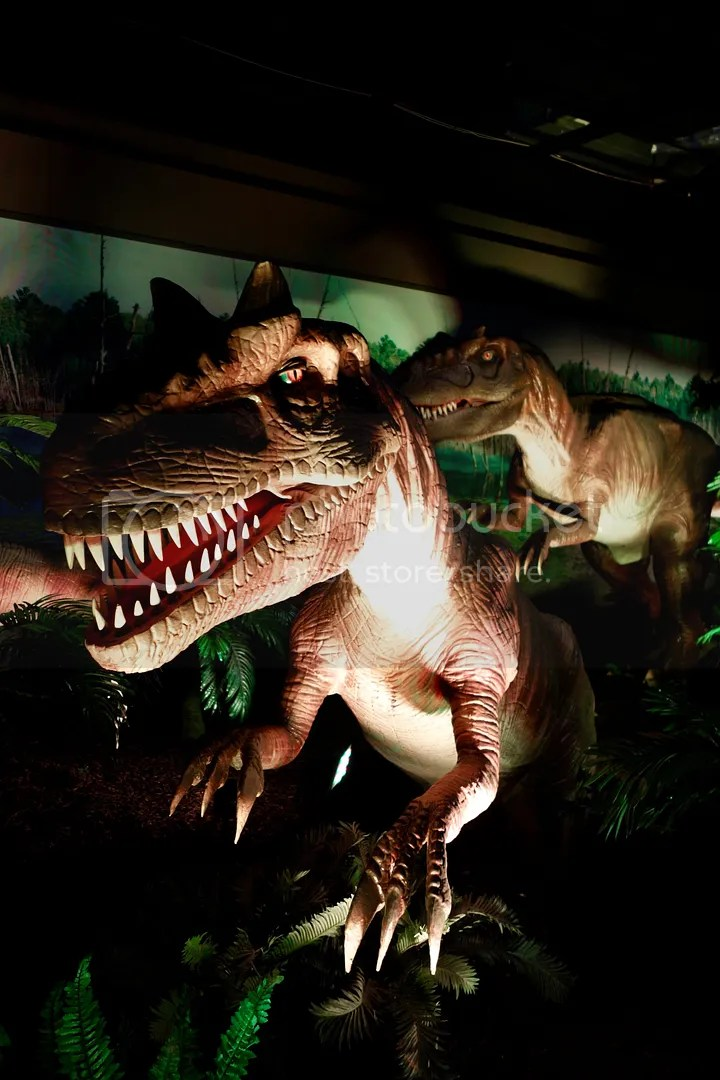 photo Museum of Natural Sciences Dinosaur Exhibit 2_zpsmyqqh95l.jpg