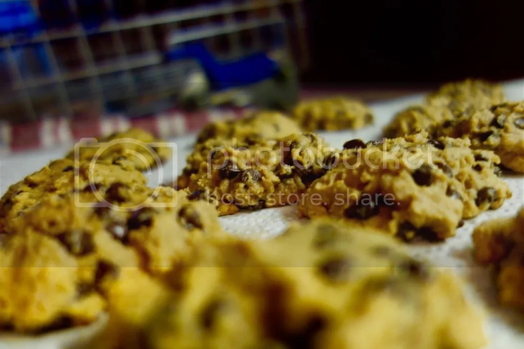 photo Pumpkin Chocolate Chip Cookies 12_zpsc71j3jef.jpg