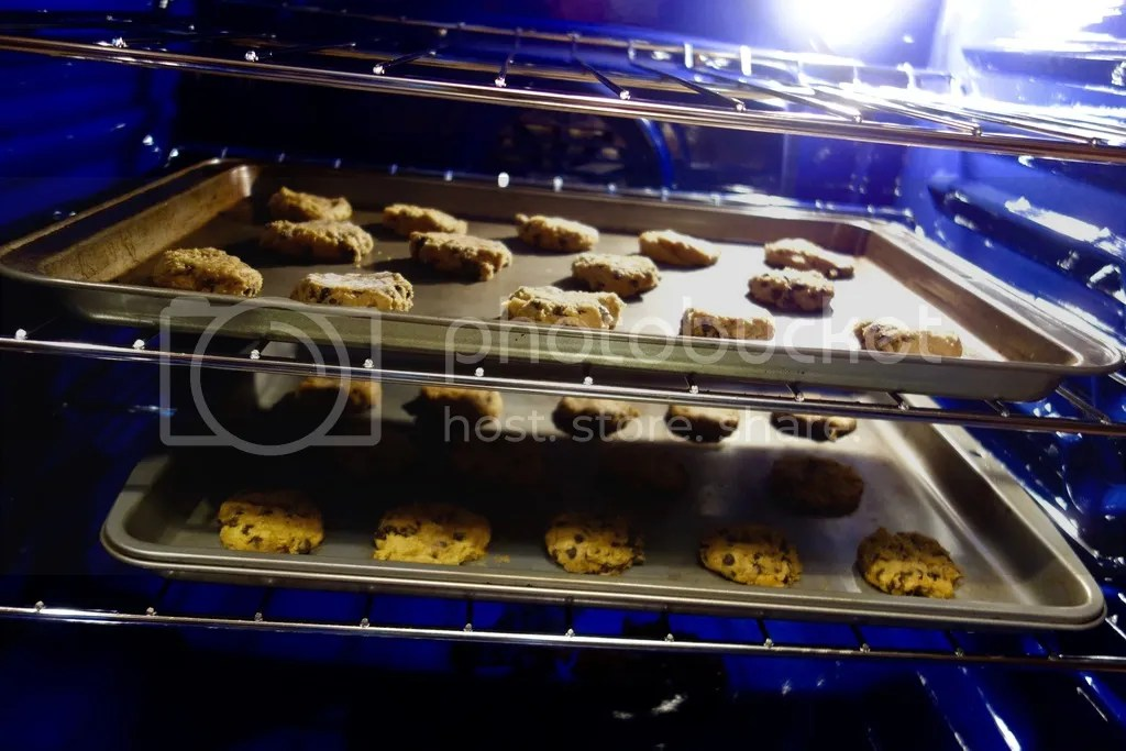 photo Pumpkin Chocolate Chip Cookies 7_zpskcojfj8a.jpg
