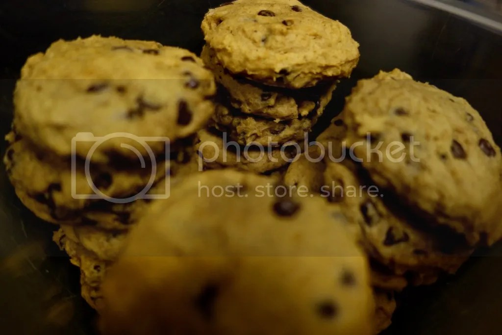 photo Pumpkin Chocolate Chip Cookies 8_zpsfkix5aso.jpg