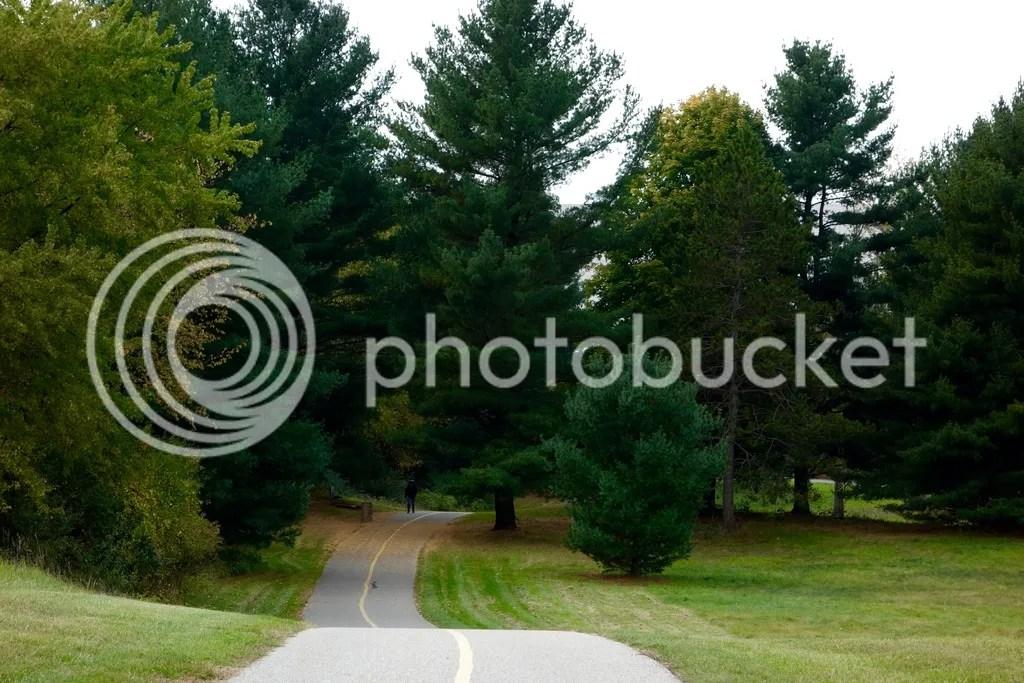 photo Stony Creek Park MI 19_zpsdhipgprw.jpg