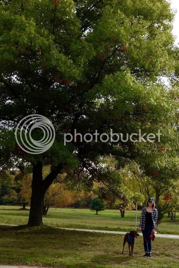 photo Stony Creek Park MI 8_zpsczcaj2sk.jpg