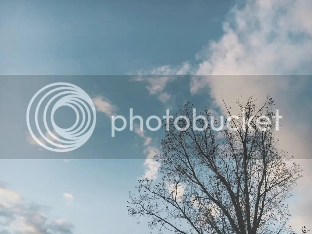 photo IMG_9124_zpsgknximeu.jpg