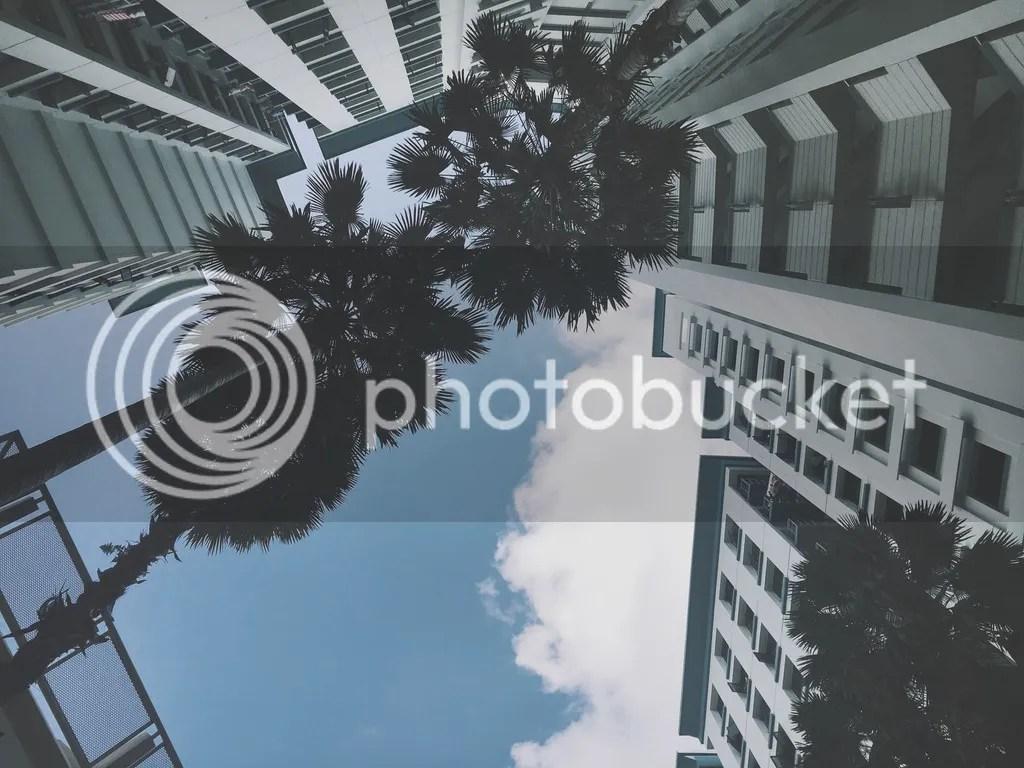 photo IMG_9726_zpszwf5wkkc.jpg