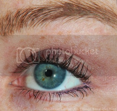 photo ItCosmeticsCCYourWaytoBeautifulSkinLookViletEyeshadowTutorialMattNaturallyPretty02_zps198496e7.jpg