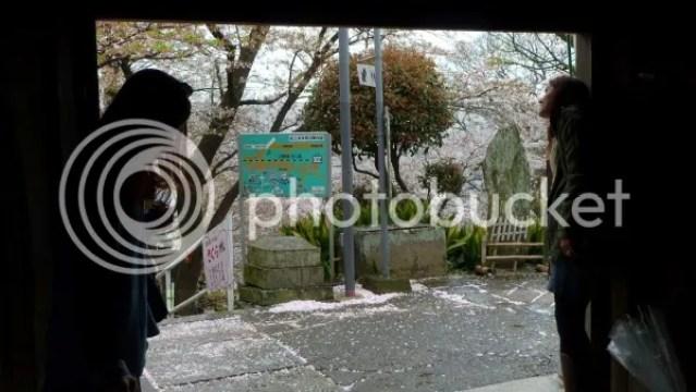 Mana y Pilar en un templo de Wakayama disfrutando de los sakura