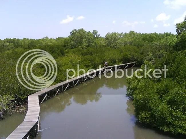 Image : www.komangwiratma.web.id
