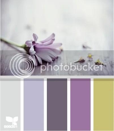 Quinn's Nursery Colors