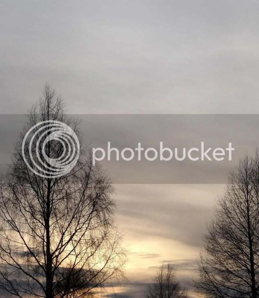 photo 5d14c92c-ffe2-409c-b730-8884db8379f2_zpsdf70022c.jpg