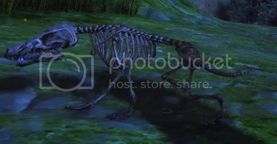 photo 6_zps6a5ec1de.jpg