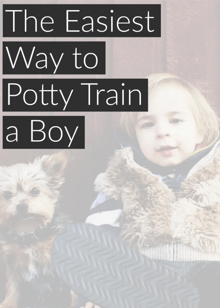 The no headache way to potty train a boy