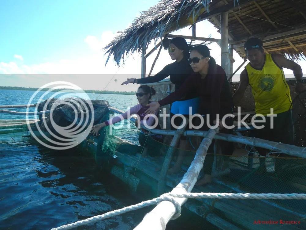 Panglao Island Hopping
