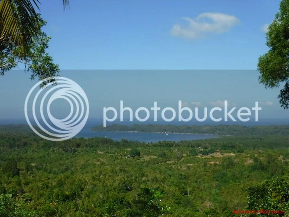 Guimaras Forest