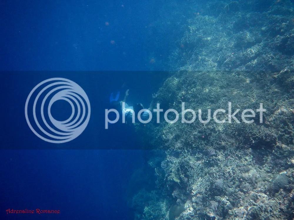 Hermits Cove Aloguinsan