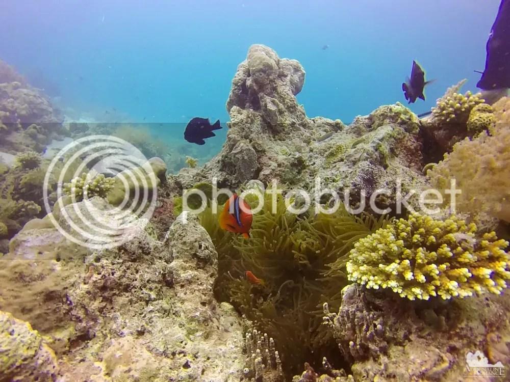 San Vicente Marine Sanctuary
