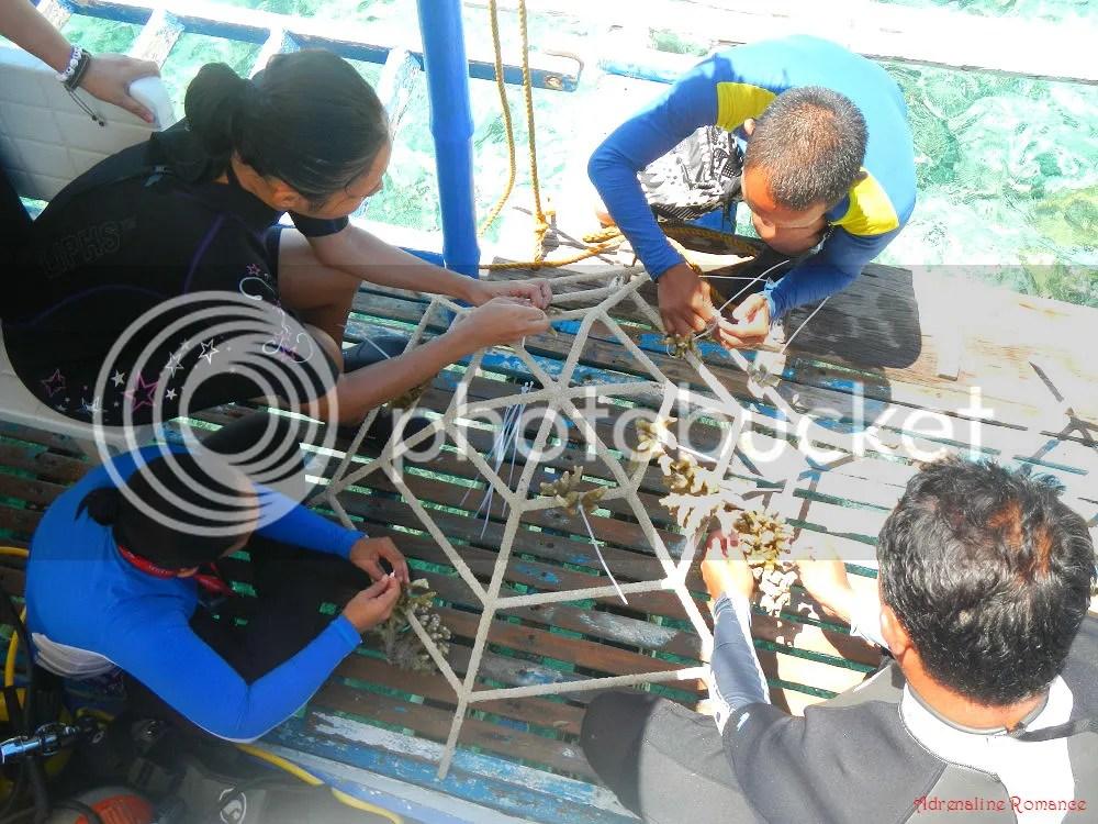 Grow Project Sumilon Bluewater Island Resort