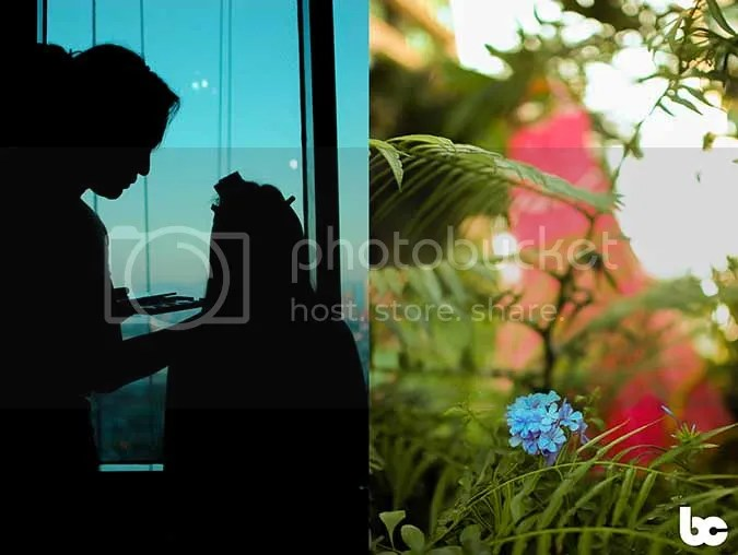 photo 01_1DSC_1271_zps5c6bfd84.jpg