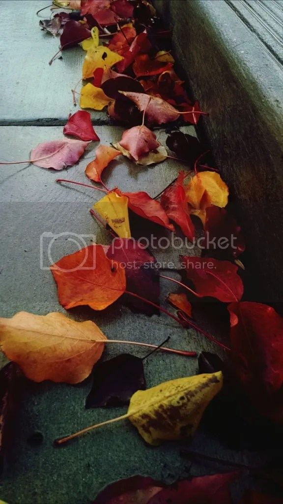 photo eyeemfiltered1417620893010_zps0ea4aa0d.jpg