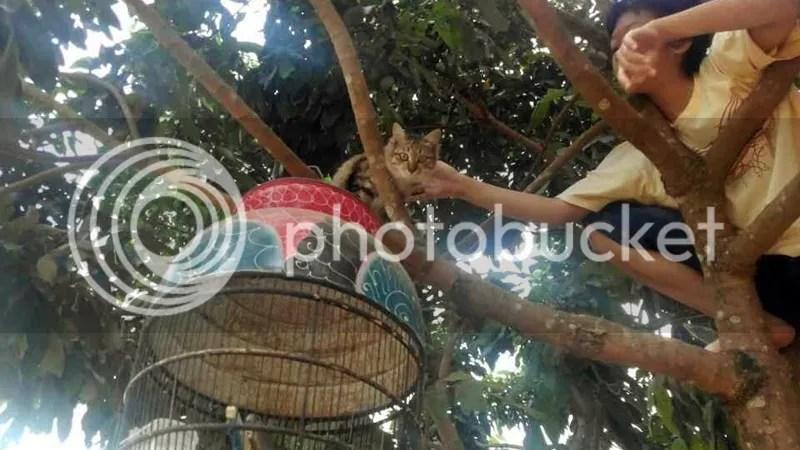 Miss Jess found some freedom during her stay in Negararatu | Hola Darla