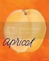 apricot photo: Apricot Apricot.jpg