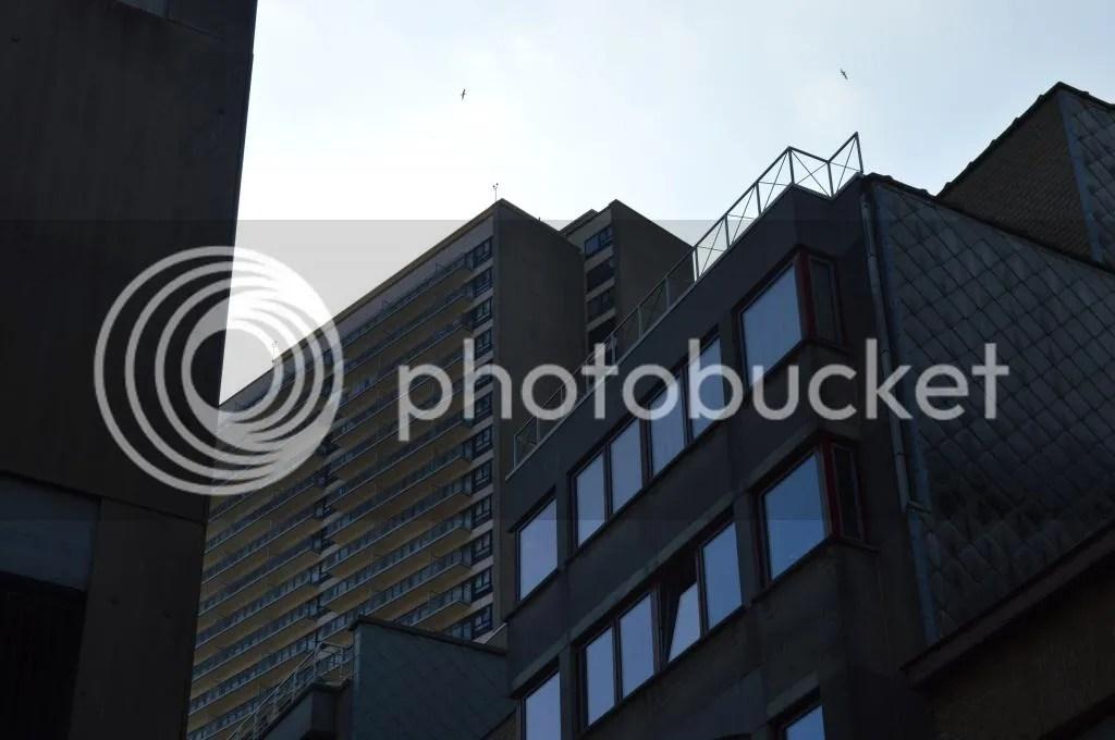photo DSC_1459_zpsa4032d90.jpg