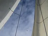 siska-sail_airplane.jpg