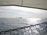 siska-sail_boats.jpg