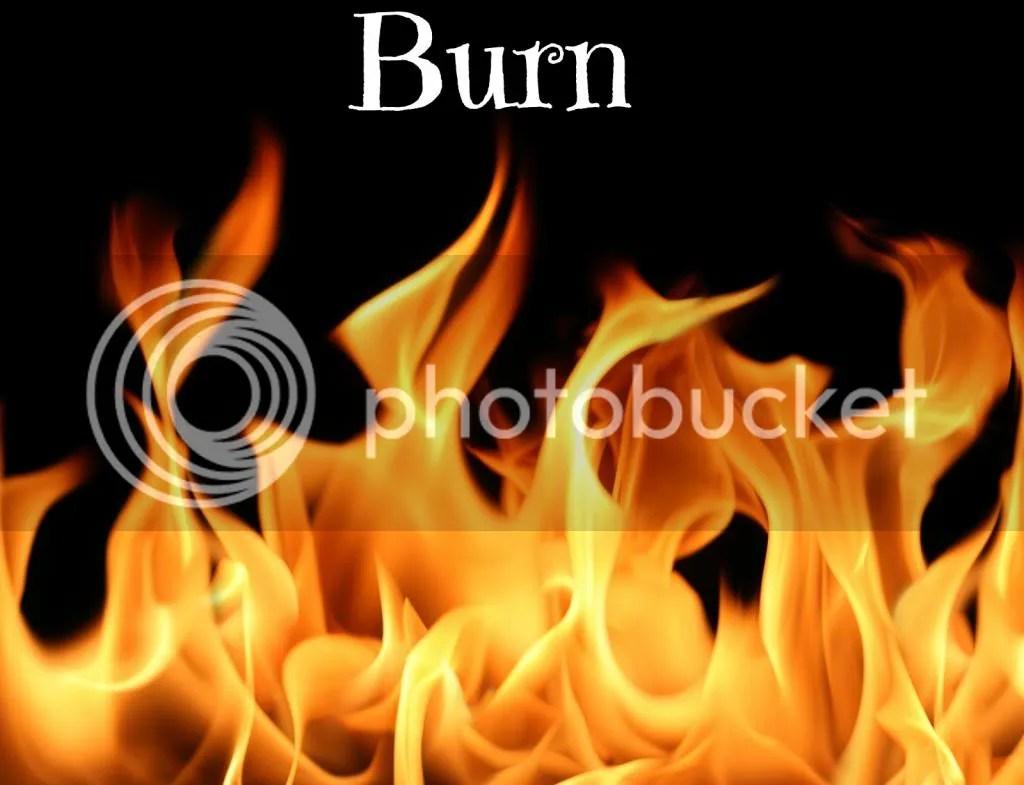 photo Flames1_zpse8c7b44f.jpg