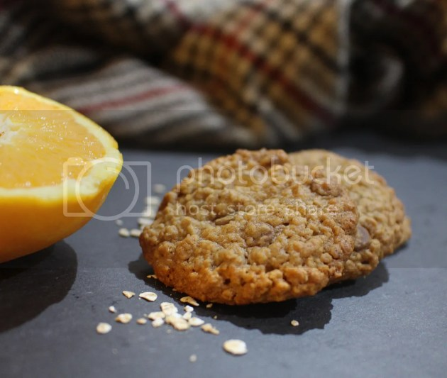 photo Chocolate Orange Ginger Cookies23_zpszebjbask.jpg