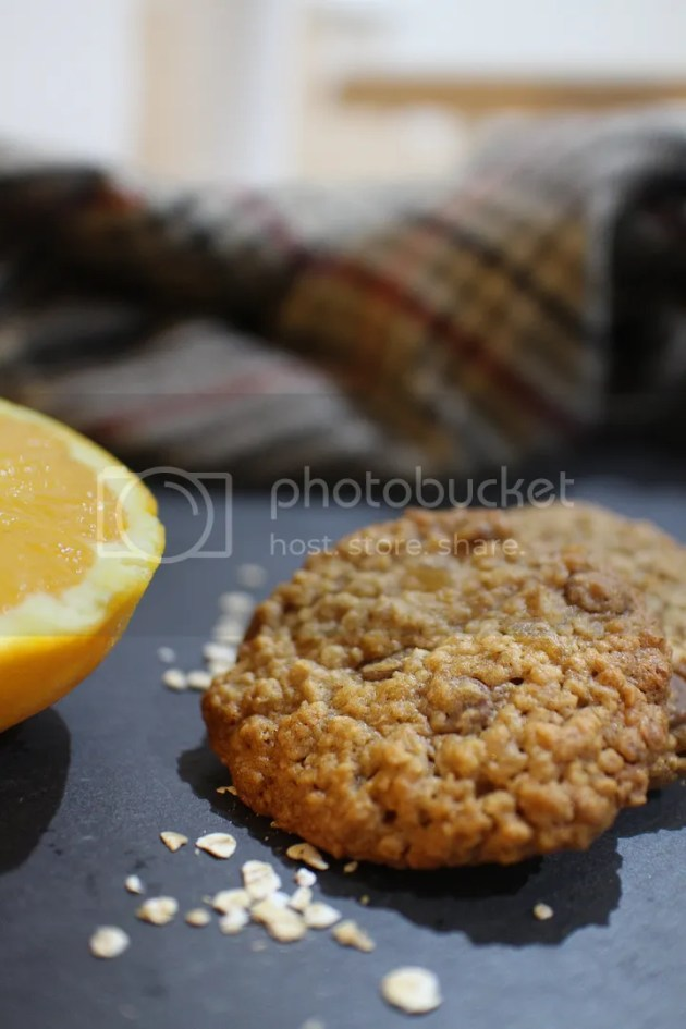 photo Chocolate Orange Ginger Cookies24_zpsdooclw9s.jpg