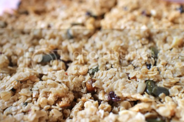 Superfood Cereal Bars7 photo bee7fc64-737a-4995-a71a-1fcbe5d01edf_zps60zejjp5.jpg