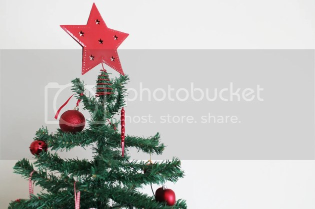 photo Christmas Decorations 2015 1_zpsusdm0two.jpg